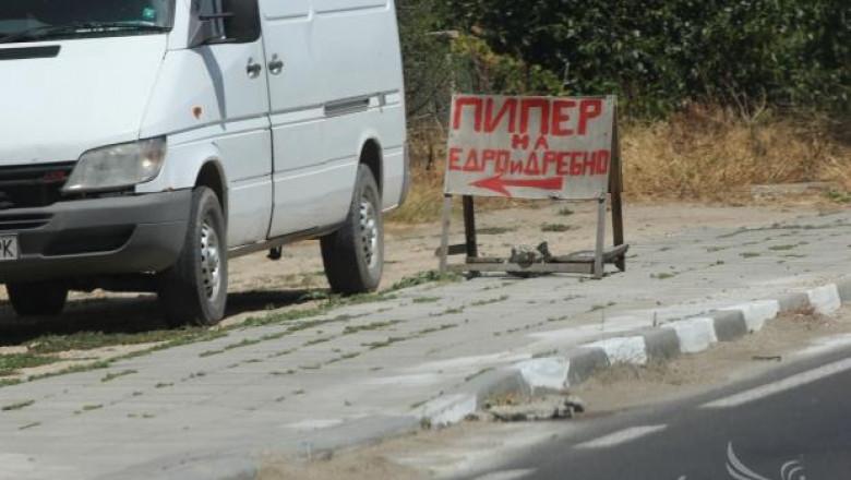 Производители на пипер  искат  среща с министър Греков заради ниските цени