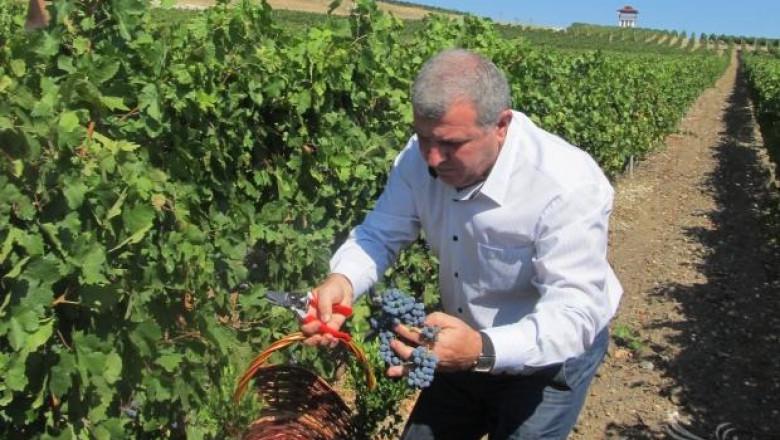 Министър Греков заминава за Китай, където ще промотира наше вино