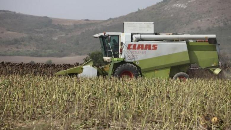 Жътвата на слънчоглед в Южна България започна по-рано