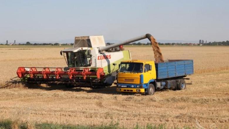 ЕК прогнозира високи добиви на мека пшеница и ечемик в България