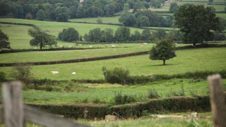 ЕС ще намали субсидиите за големите ферми и ще подкрепи младите фермери
