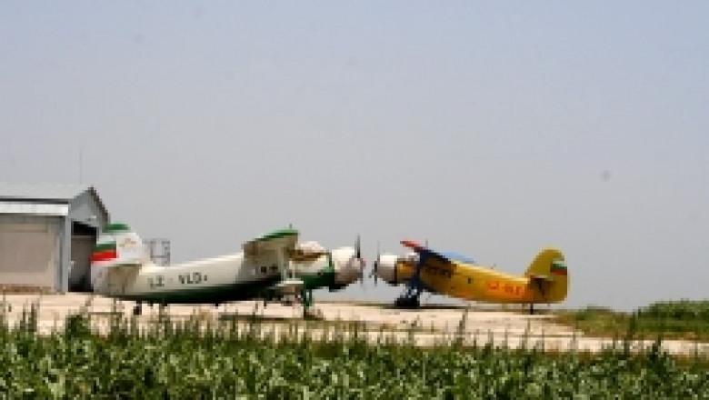 Ограничават пръскането от самолет за запазване на пчелите