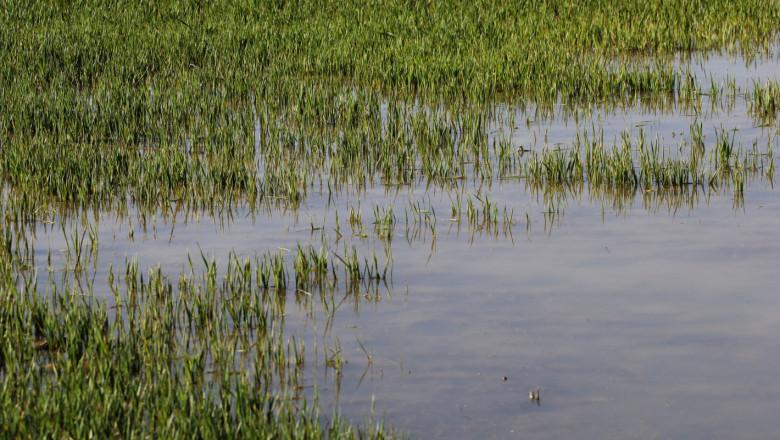 Редица пропаднали площи в Добричко заради проливните дъждове
