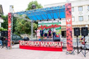 Фестивал на малината в Лозница