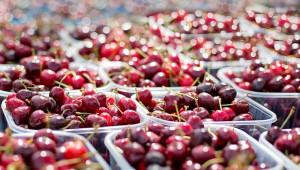 Агроиновации: 6 стратегически цели на EIT Food за цифрова трансформация