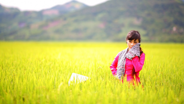 Новата ОСП: Вижте пълната картина на селското стопанство по браншове