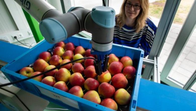 Агроиновации: Проектът agROBOfood отваря път за роботизираните технологии