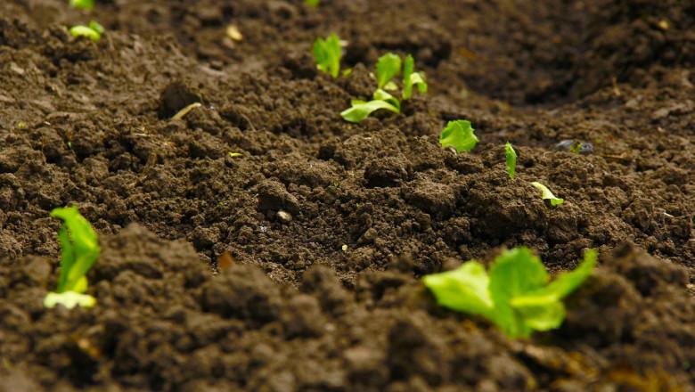 Грижата за почвите в дневния ред на европейските министри