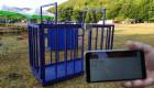 Електронен кантар до 1500 кг - Снимка 4
