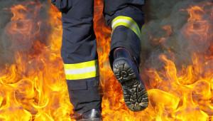 ДФЗ: Глоби за фермери заради запалени стърнища при 103 пожара