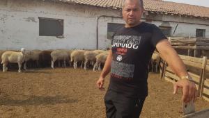 Животновъд за сушата: Трябва държавна помощ, за да оцелеят животните