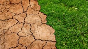 Мерките за климата и директните плащания - ще има ли сблъсък?