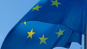 Изслушване в Европарламента: Субсидии и реформи в новата ОСП - Agri.bg