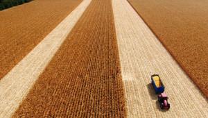 2019 г. в селското стопанство: Рентите