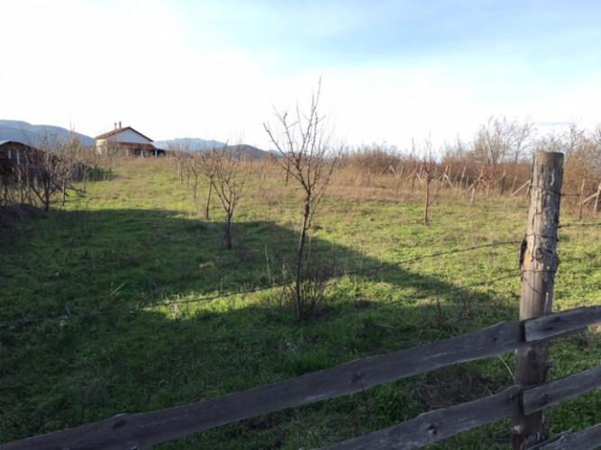 3 имота - Ферма : гора : ниви - общо 17.4 дка - Снимка 1