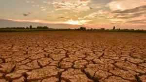 Експерт: Тежки години очакват земеделските стопани