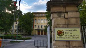 Приемът по новата Пчеларска програма започва от днес - Agri.bg