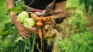 Вижте промените в обвързаното подпомагане на плодове и зеленчуци - Agri.bg