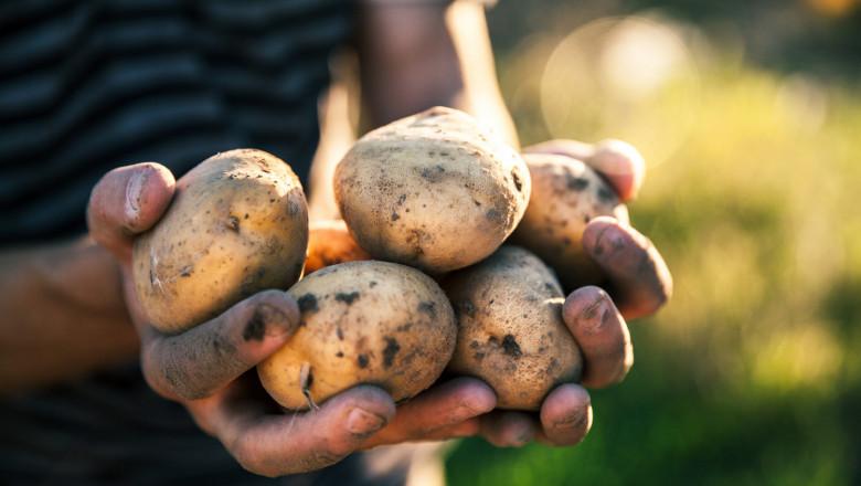 Земеделци: Трябва ни Кризисен щаб за продоволствието