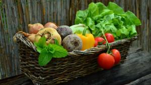 Оптималното фосфорно хранене увеличава количеството и качеството на добивите
