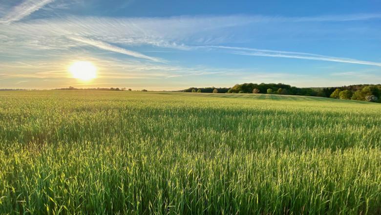 Агропрогноза: Най-накрая – идва затопляне