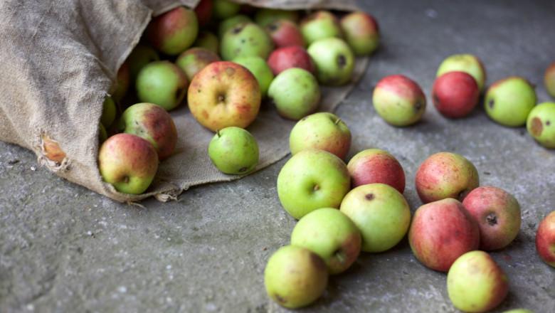 De minimis за продажби на плодове и зеленчуци: Разпределят 4 млн. лв.