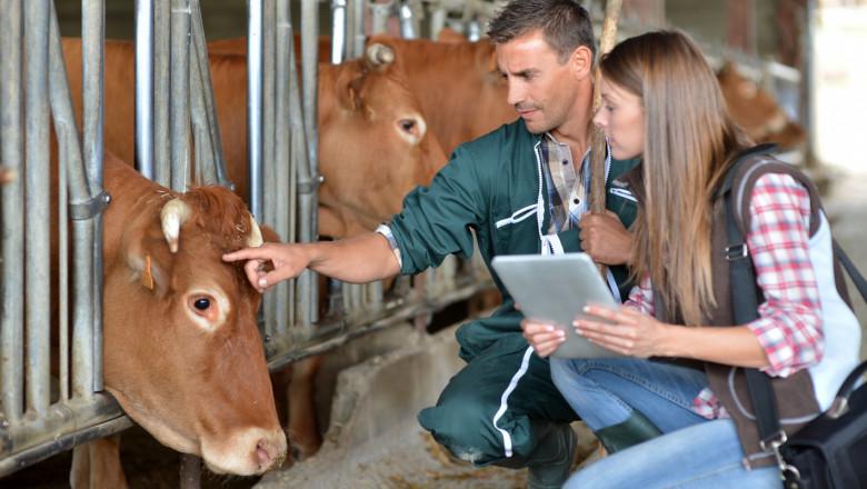 Животновъдство – как ще се контролират развъдните организации?