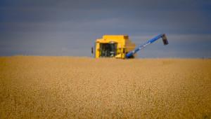 Зърнопроизводител рекордьор счупи собствения си рекорд