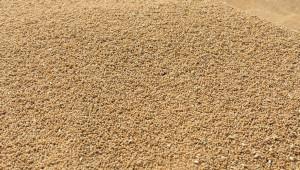 Как да се предпазят от вредители зърнените запаси?