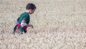 Северната ни съседка също страда от слаба реколта