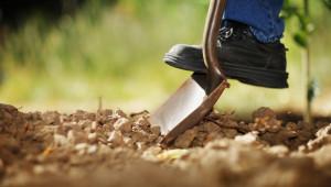 Градивни критики към Наръчника за зелени практики