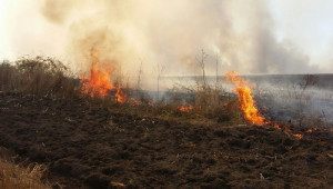 Затягат контрола в стопанствата заради опасността от пожари