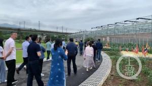 Мега агропроектът, който ще увеличи доходите на хиляди фермери