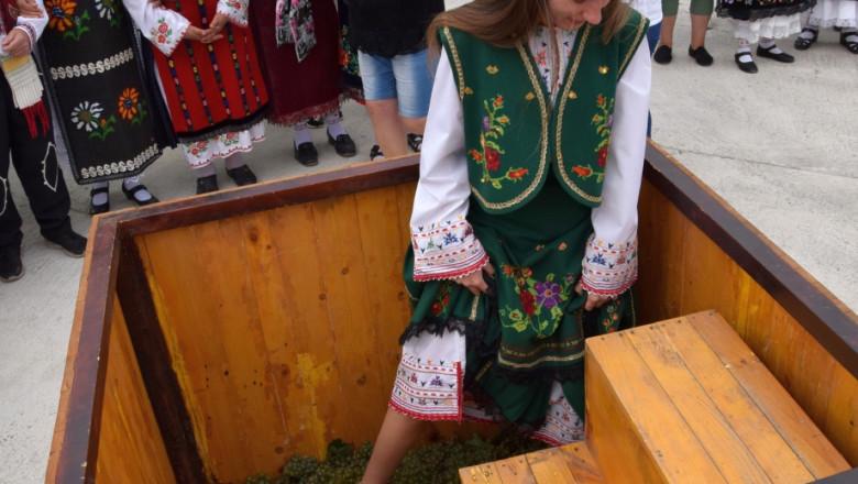 С древен ритуал започна гроздоберът във Видинско