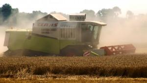 Земеделци от Добруджа: Искаме обявяване на форсмажорна година!