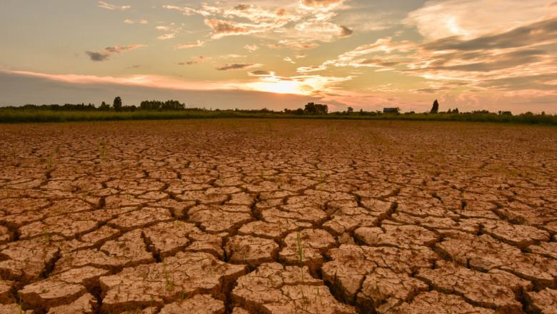 Производители: Кредитите за есенната сеитба да станат безвъзмездна помощ