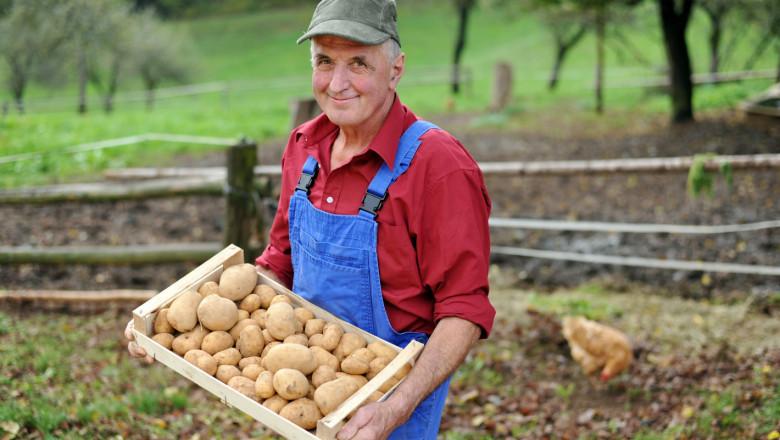 Малки ферми в Унгария получават до 15 000 евро