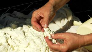 Проектонаредба: 80% сурово мляко в млечните продукти