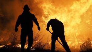 ДФЗ плати парите по de minimis за пожарите