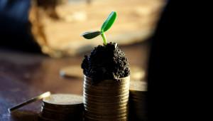 Субсидиите на европейско ниво трябва да се изравнят