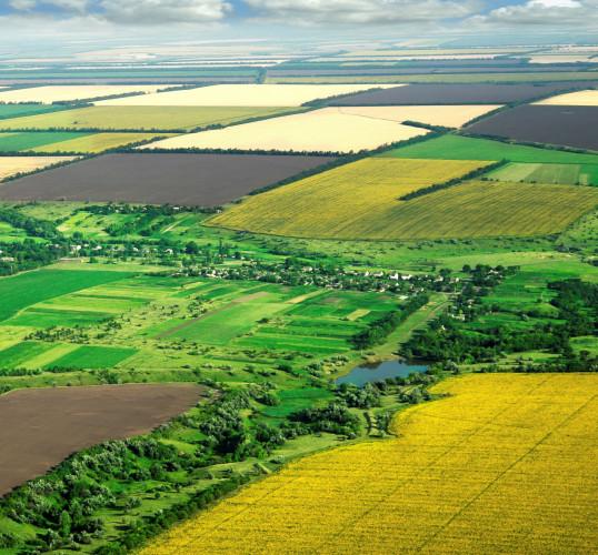 Търся да закупя земеделска земя - Снимка 1