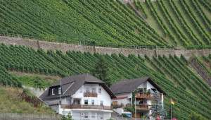 Как Германия защитава земеделската си земя от спекулации