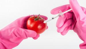 ЕС определя проект за бъдещето на системата за безопасност на храните