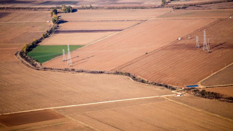 Зърнопроизводство: До 15% по-малко засети площи