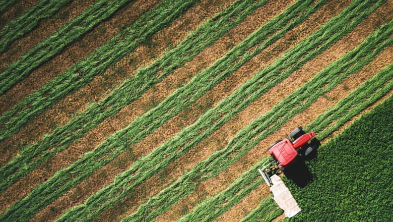 Анализ: Увеличава се броят на едрите фермери у нас