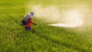 Нови изисквания в търговията и употребата на препаратите за растителна защита - Agri.bg