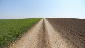 Цени на земеделските земи: Най-стръмното увеличение на цените от 6 години