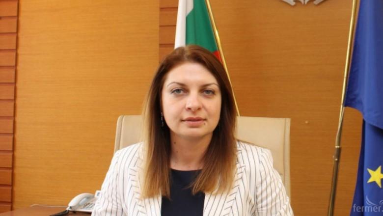 Вергиния Кръстева – Горова вече не е заместник-министър