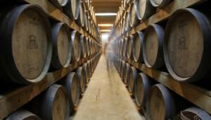 Приемът за инвестиции във винарни отваря на 1 февруари - Agri.bg