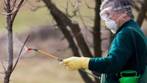 На 8 февруари стартира прием за документи за помощ за зимни пръскания - Agri.bg